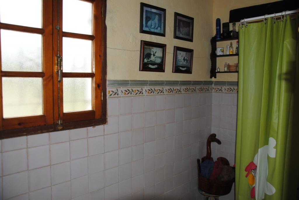 finca_chiclana_property_immobilien_alcornoque8-1024x685