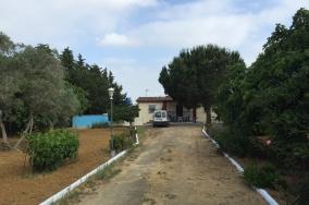 immobilien_properties_costadelaluz_chiclana_fincapagodelbueno1
