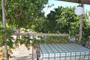 casa_piscis_property_pagodelhumo_immobilien_chiclana_cadiz.16-300x200