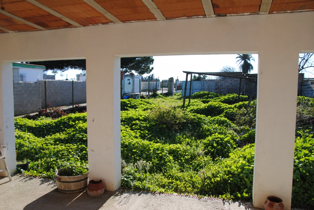 casantonio_chiclana_immobilien_fincas_properties.2-1024x685