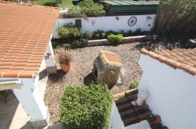 garden from roof